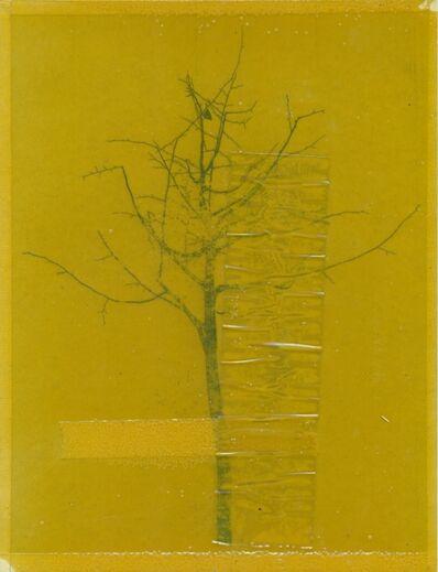 Moris, 'Fake tree man (bawd)', 2014