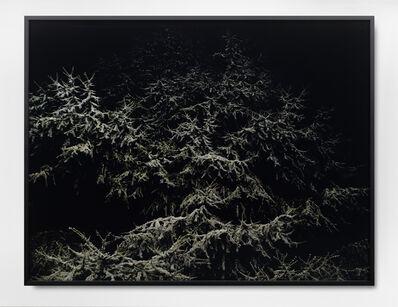David Zink Yi, 'o.T. (Ref: Zeder 1)', 2009