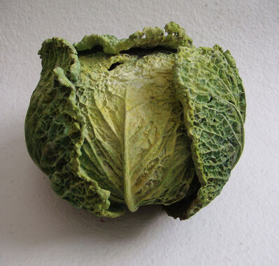 Rafael Muyor, 'Cabbage'