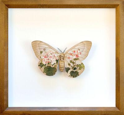 Akihiro Higuchi, 'Collection 0417', 2017