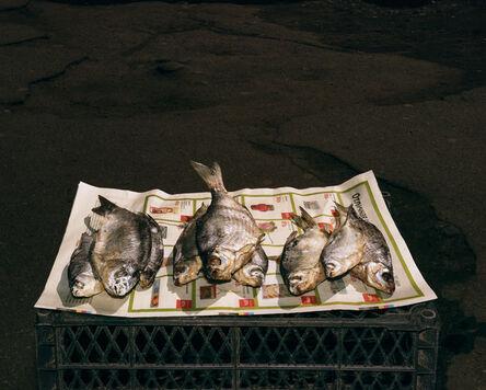 Lia Darjes, 'Stillleben mit Fischen, Kaliningrad', 2016