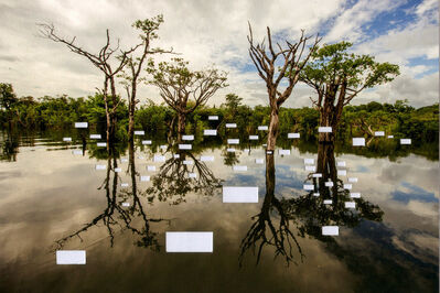 Gilvan Barretto, 'Postcards from Brazil', 2016