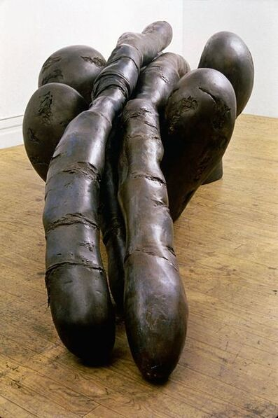 Mary Ann Unger, 'DEPOSITION/NATURE MOURNED', 1991