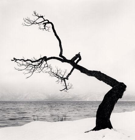 Michael Kenna, 'Kussharo Lake Tree, Study 15, Kotan, Hokkaidh, Japan', 2009