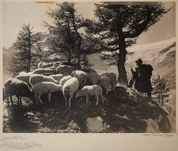 """Albert Steiner, '""""Graubunden. Schafhirte bei Alp Grum am Berninapass.-""""  (""""Graubunden. Shepherd at Alp Grum am Bernina Pass.- """")', 1925-1950"""