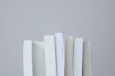 Mary Ellen Bartley, 'Untitled #23', 2009