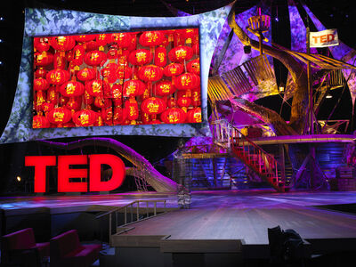 Liu Bolin, 'Hiding in California No 1 - TED', 2013
