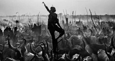 David Yarrow, 'Proud Night Watchman ', 2015