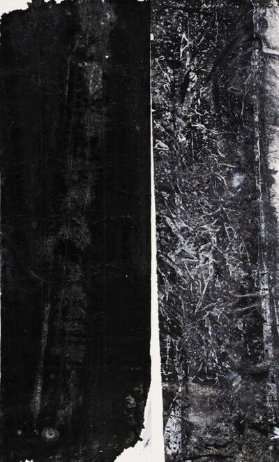 Zheng Chongbin 郑重宾, 'Dark Shade', 2012