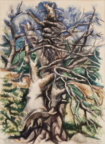 Loren Mozley, 'Broken Cypress', 1956