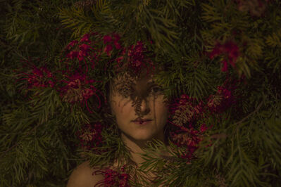Itamar Freed, 'Red Flowers', 2016