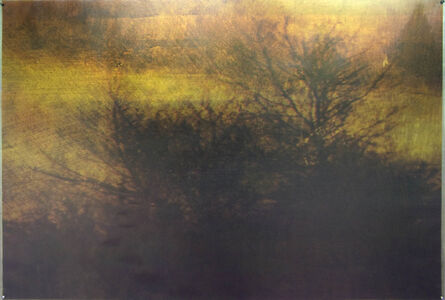Dorothy Simpson Krause, 'Trace', 2008