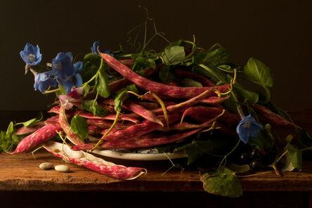 Paulette Tavormina, 'Cranberry Beans, after G.G.', 2009