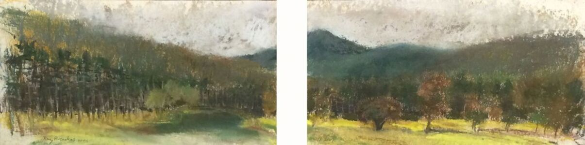 Ray Ruseckas, 'Looking West in Townsend', 2009
