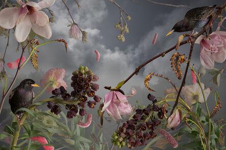 Jason DeMarte, 'Invasive Apathy', 2018
