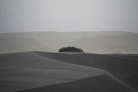 Daniel Ackerman, 'Dunas de Taton | Dunes of Taton', 2019