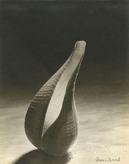 Ruth Bernhard, 'Untitled', ca. 1943