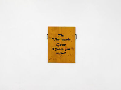 Ingrid Hora, 'sculpture painting', 2019