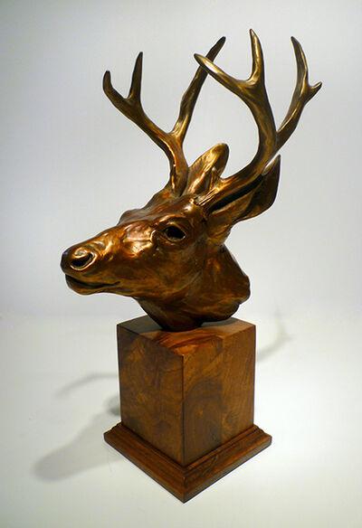 Margery Torrey, 'Deer Head'