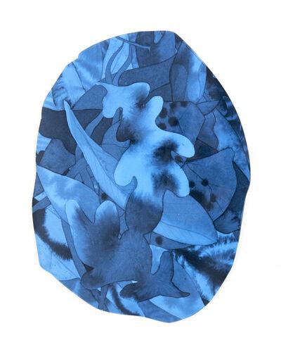 Ashley Zangle, 'Abalone Shell Botanical', 2018