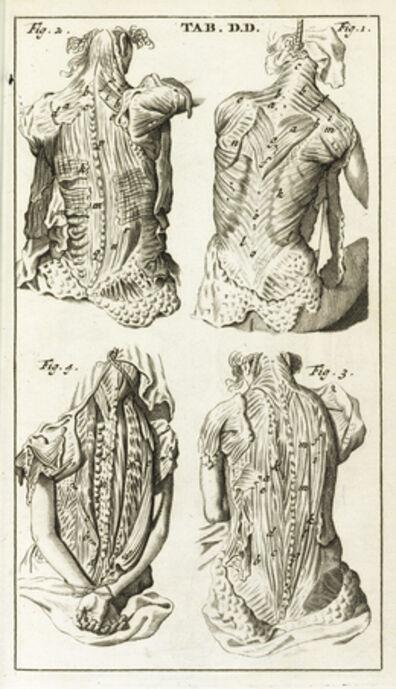 Steven Blankaart, 'Tab. DD', 1695