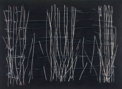 Nancy Charak, 'Cacophony: Desert Crust', 2019