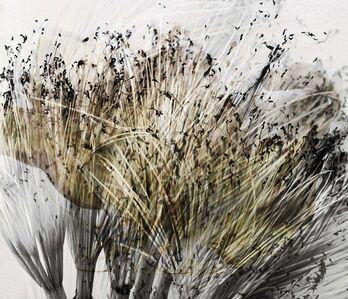 Luisa Libardi, 'Wires (Fios-Desfios) V', 2020