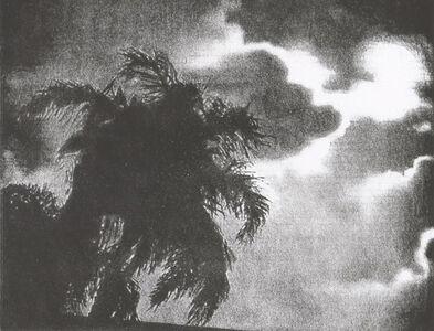Ann Chernow, 'Dark Palms', 2019