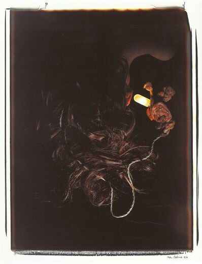 Helen Chadwick, 'Meat Abstract No. 7: Hair and Entrails', 1989