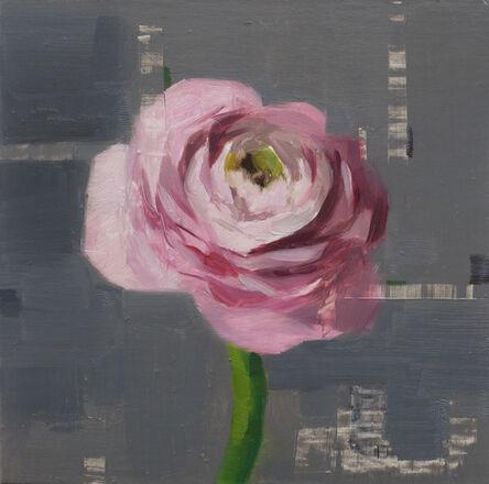 Jon Doran, 'Pink Ranunculus', 2018