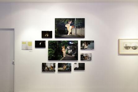 Tasuku Amada, 'Disaster and Silence', 2011-2013