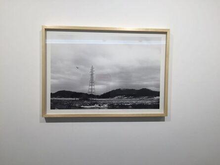 Takashi Kuribayashi, 'Lion', 2016