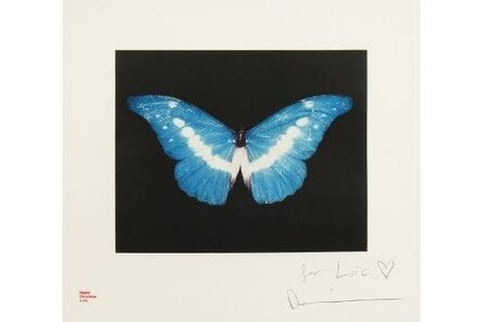 Damien Hirst, 'Blue Butterfly', 2008