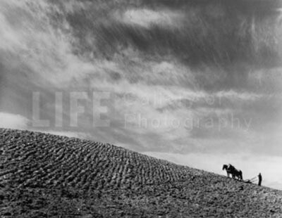 Margaret Bourke-White, 'Sharecropper Plowing a Field with Pair of Horses', 1937