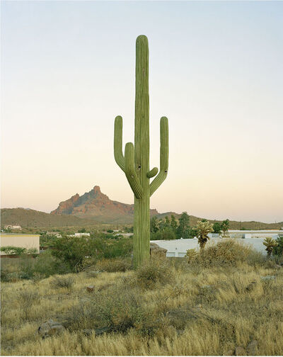 Robert Voit, 'East Cosmic Drive, Fountain Hills, Arizona', 2005