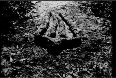 Ana Mendieta, 'Still from Untitled (Gunpowder Silueta Series)', 1981