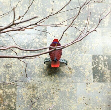 Eric Pillot, 'Red Bird', 2015