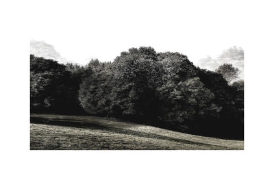 Overlap, 'Trees & Keys - Mix 1.4, Recording 37, 6091 : Print', 2016