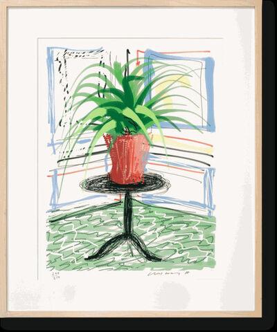David Hockney, 'A Bigger Book. ART EDITION NO. 501–750  'UNTITLED, 468' EDITION OF 250', 2010