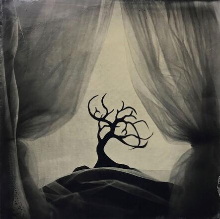 Angie Brockey, 'Tree', 2020
