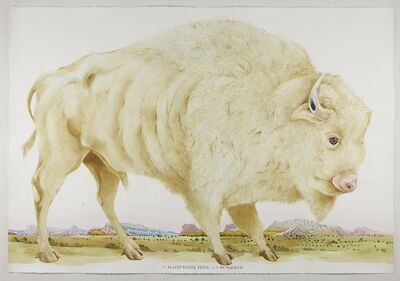 Scott Kelley (b. 1963), 'The Sacred White Buffalo of Pojoaque', 2021