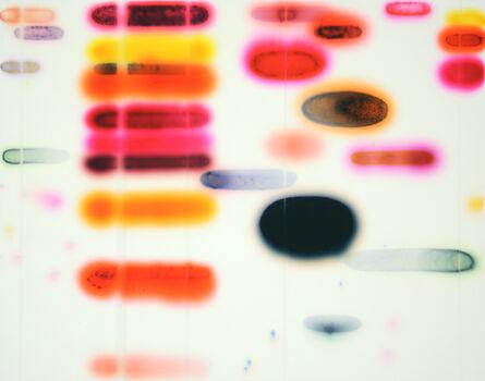 Jaq Chartier, 'Pink/Orange', 2017