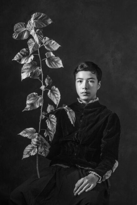 Stanley Fung, 'Young Twig', 2014