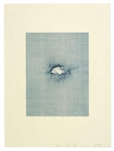 Ann Hamilton, 'script b', 2008