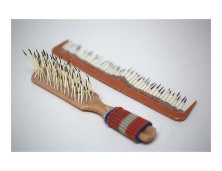 Monica Cook, 'Brush and Comb', 2014