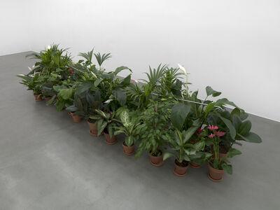 Luciano Fabro, 'Tubo da mettere tra i fiori (Tube to Place Among Flowers)'