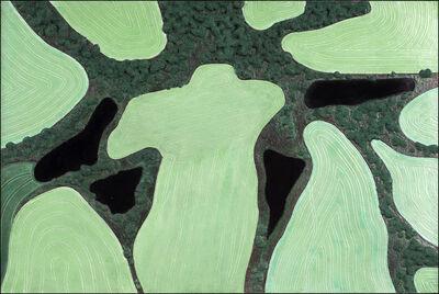 Diana Moore, 'Four Ponds'