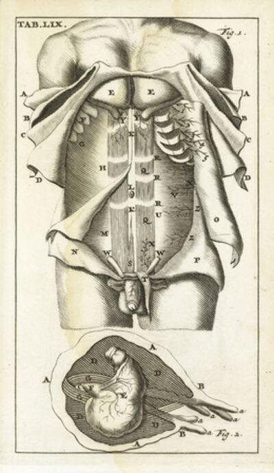Steven Blankaart, 'Tab. LIX', 1695