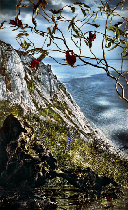 Holly King, 'Cliff with Vines', 2015