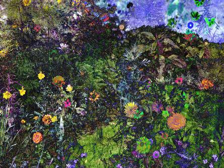 Helen Sear, 'Small Delight 2', 2020